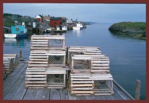 Lobster-Traps